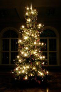 csm_07_MEK_Weihnachtsbaum_612557f968