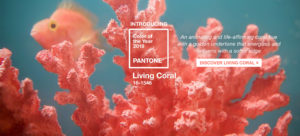pantone-color-of-the-year-2019-living-coral-homepage