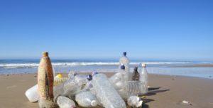 Fotos_Kueste gegen Plastik