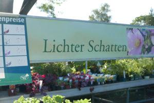 Arboretum Spaeth_Gruene Orte_Sademann_web( Lichter Schatten Garten WEB