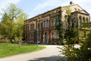 SpaethscheBaumschulen_Herrenhaus_Foto_Daniela-Incoronato-WEB