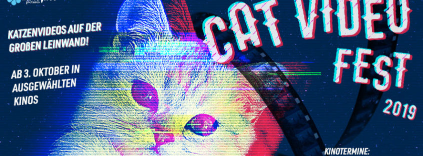 Header Cat Video Fest 2019